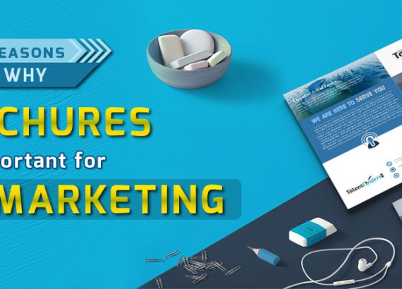 Importance of Brochure design in Marketing - DeDevelopers