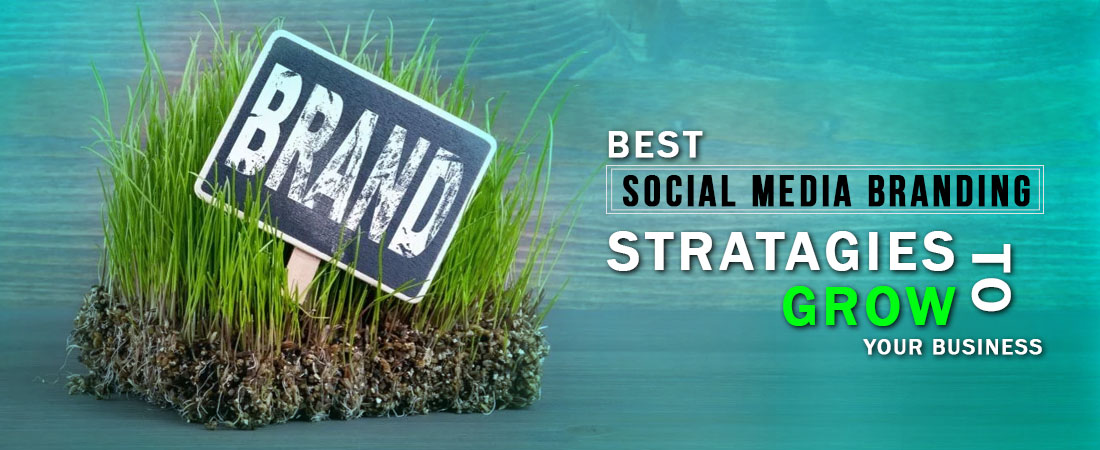 best social media stratigy to grow your brand - DeDevelopers